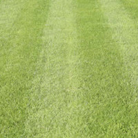 Lawn Mower Question Series (5 of 6): When's The Best Time To Buy A Lawn Mower?