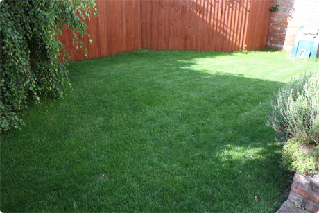 Smaller and tight areas require a smaller and more manageable lawn mower.