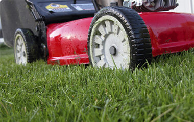 Mowing-your-lawn-advice