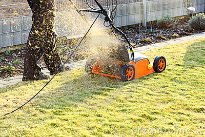 Domestic Electric Lawn Rake Scarifiers