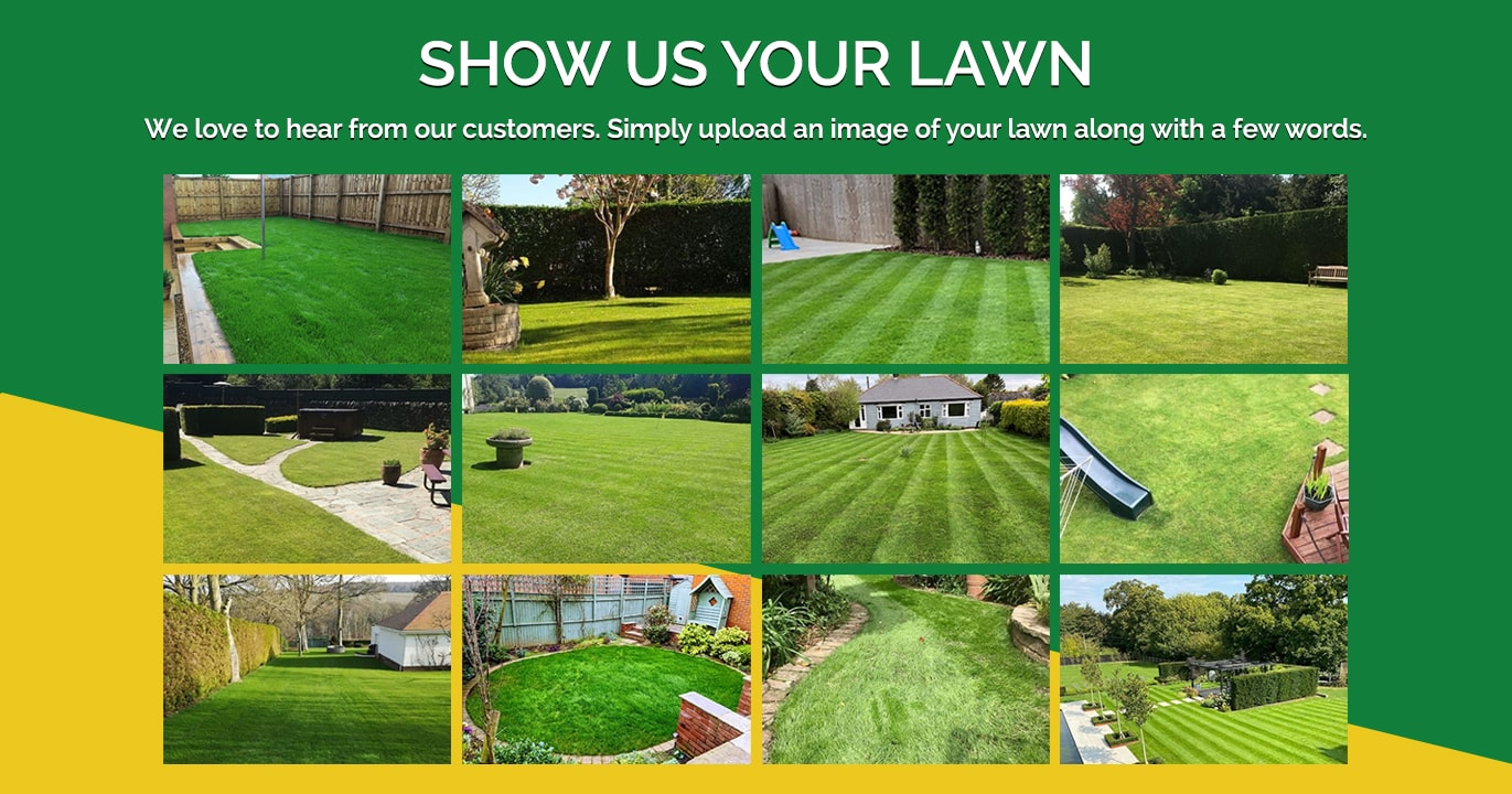 show_us_your_lawn_lawn_master