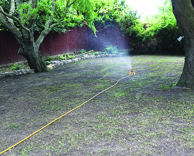 Lawn-Master-Watering-Your-Lawn
