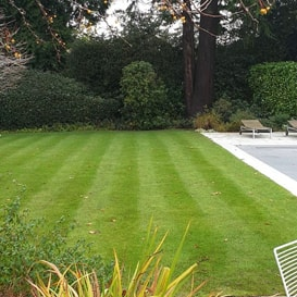 Lawn care in Walton On The Hill