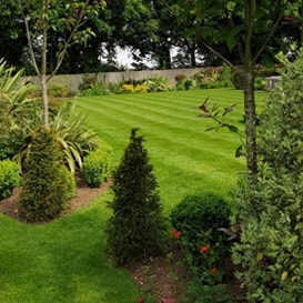 Lawn care in Chelsham