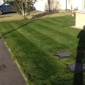 Example 2 of lawn care completed by Andy Wilson