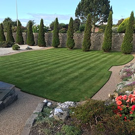Example 6 of lawn care completed by Barry Dolan