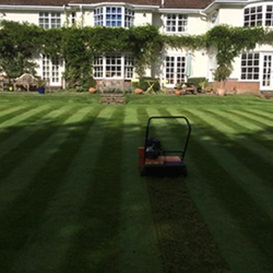 Example 1 of lawn care completed by Ben Lambert