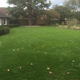 Example 4 of lawn care completed by Ben Lambert