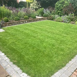 Lawn-Care-Worksop