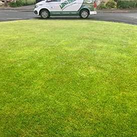 Lawn care in Coningsby