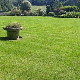 Lawn care in Worksop