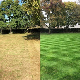 Example 1 of lawn care completed by Jonathan Eves