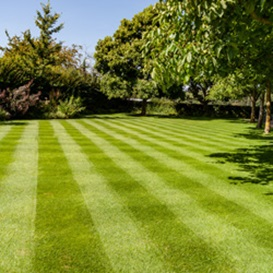 Example 4 of lawn care completed by Jonathan Eves