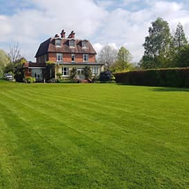 Lawn care in Wadhurst