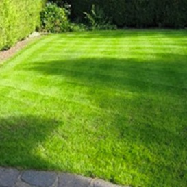 Example 2 of lawn care completed by Kevin Unsworth