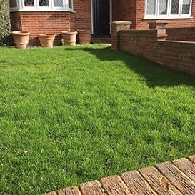 Lawn care in Dorset