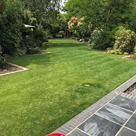 Lawn care in Suffolk