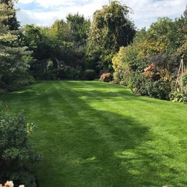 Lawn care in Aldeburgh