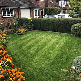 Lawn care in Long Stratton