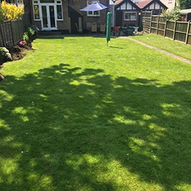 Lawn care in Beccles