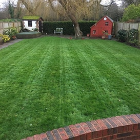 Lawn care in Lowestoft