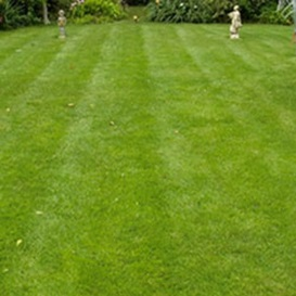 Example 4 of lawn care completed by Malcolm Garlick