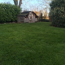 Lawn care in Long Crendon