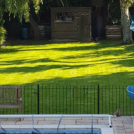 Lawn care in South Buckinghamshire