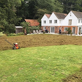 Lawn care in High Wycombe
