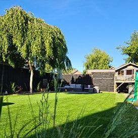 Lawn care in Nettlebed