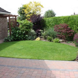 Example 3 of lawn care completed by Paul Chilvers