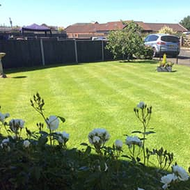 Example 5 of lawn care completed by Paul Chilvers