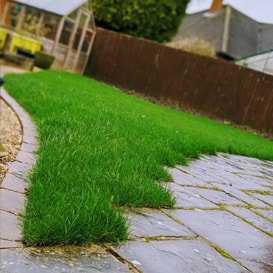 Lawn care in Leicester Forest East