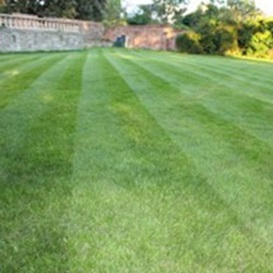 Example 1 of lawn care completed by Peter Blackaby
