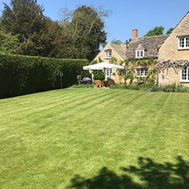 Lawn care in Forest of Dean