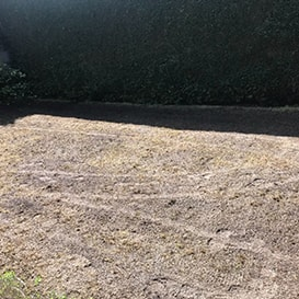 Lawn care in Cirencester