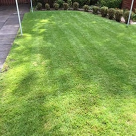 Lawn care in Stirling
