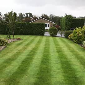 Lawn care in Glenrothes