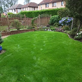Lawn care in Dunfermline