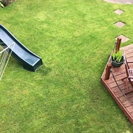 Lawn care in Cupar