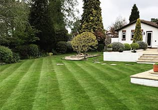 portsmouth lawn care service